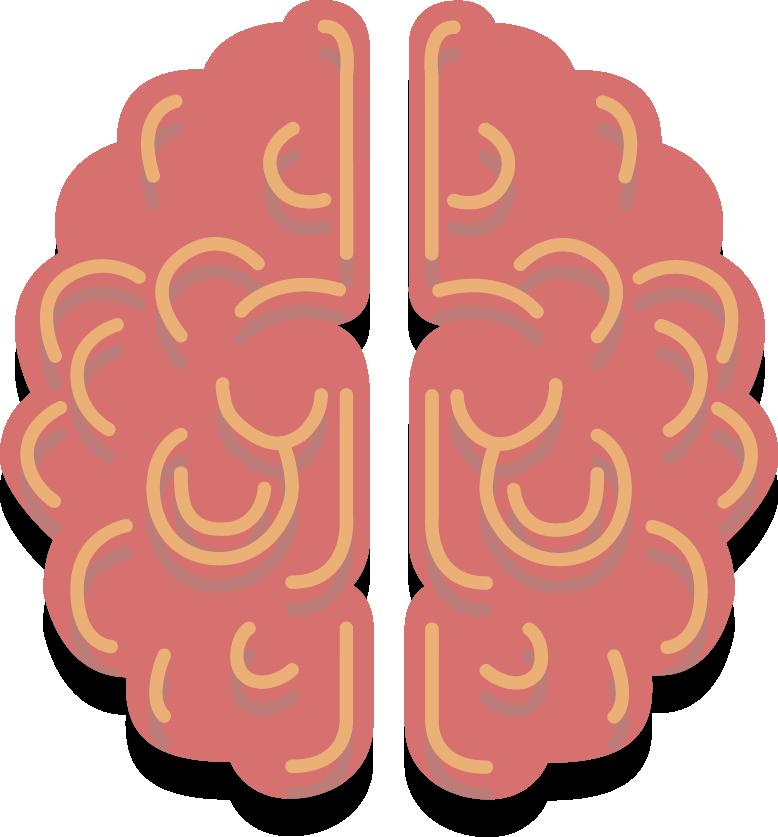 solo cerebro