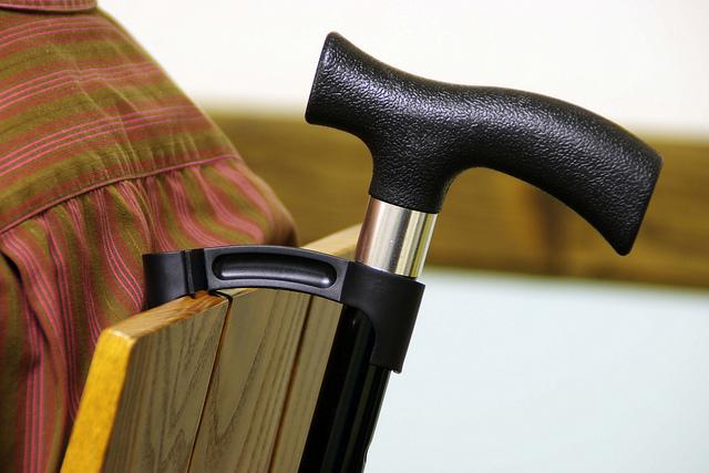 Bridgit - Soporte para muletas y bastones