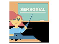 Formación Inicial en sala Sense  - Curso de formación para profesionales de sala sensorial
