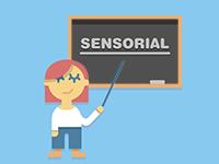 Formación completa en sala Sense - Curso de formación para profesionales de sala sensorial
