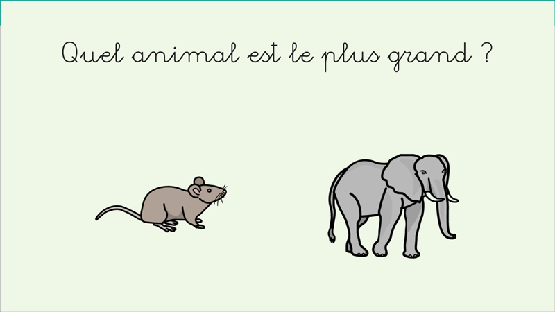 Compare animals (French)