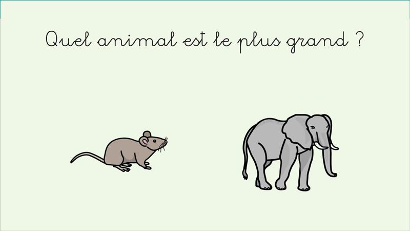 Comparar animales