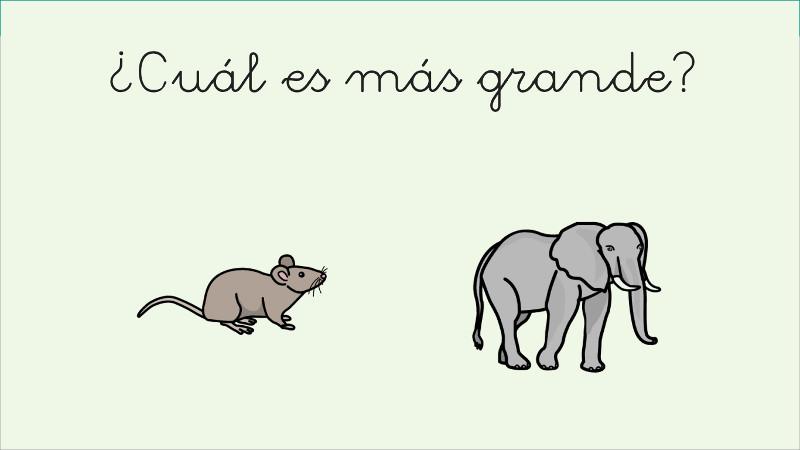 Compare animals