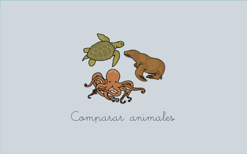 Compare animals (with sounds)