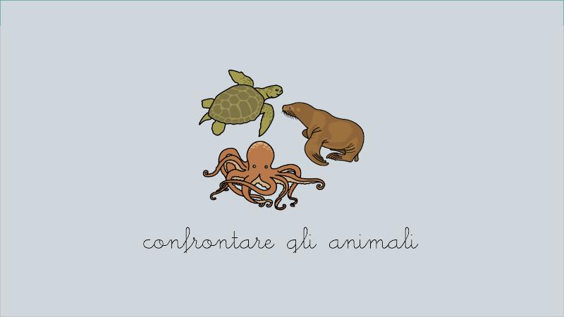 Confronta animali (con suoni)