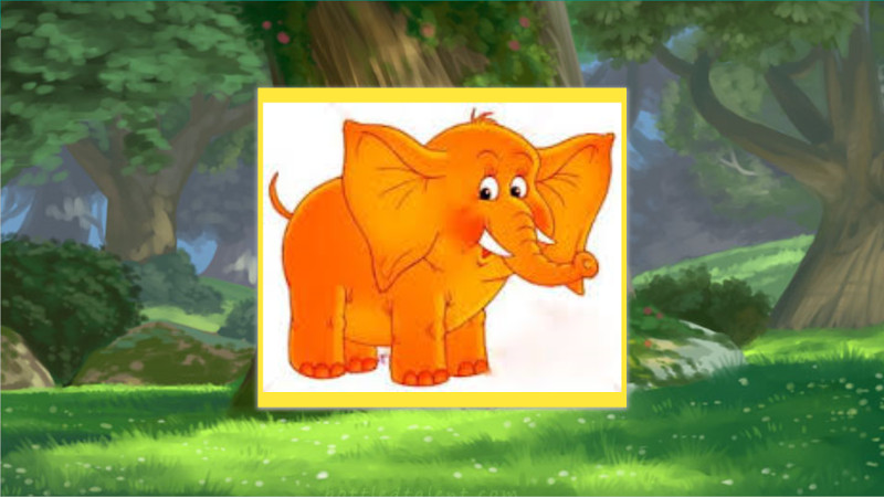The Orange Elephant
